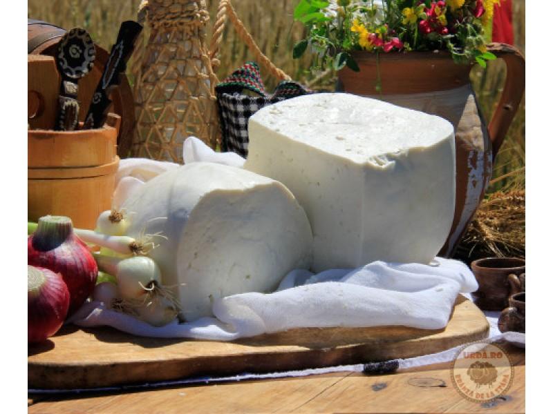 Brânză telemea de vacă - lapte pasteurizat
